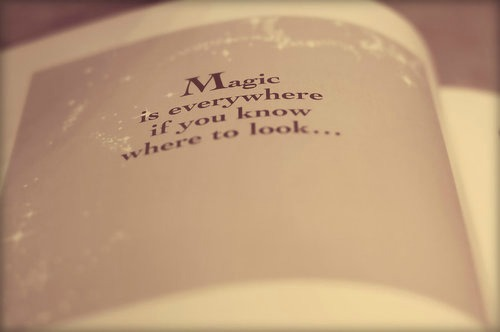 magic is everywhere if you know where to look